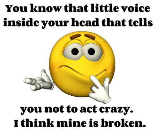 Acting: You know that little voice  inside your head that tells  you not to act crazy.  think mine is broken.