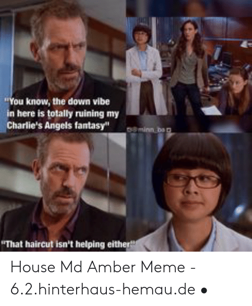 """Amber Meme: """"You know, the down vibe  in here is totally ruining my  Charlie's Angels fantasy""""  paminn bapa  """"That haircut isn't helping either House Md Amber Meme - 6.2.hinterhaus-hemau.de •"""