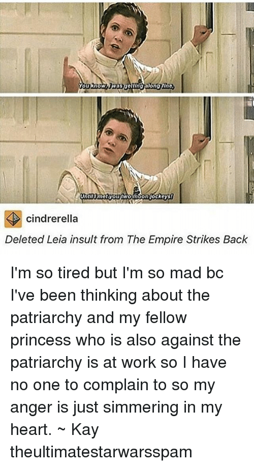 The Empire Strikes Back: You know  Until met you fWon  on jockeys!  cindrerella  Deleted Leia insult from The Empire Strikes Back I'm so tired but I'm so mad bc I've been thinking about the patriarchy and my fellow princess who is also against the patriarchy is at work so I have no one to complain to so my anger is just simmering in my heart. ~ Kay theultimatestarwarsspam