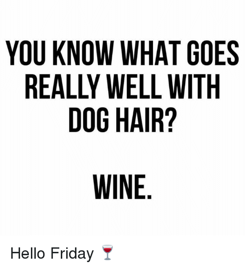 Hello Friday: YOU KNOW WHAT GOES  REALLY WELL WITH  DOG HAIR? Hello Friday 🍷