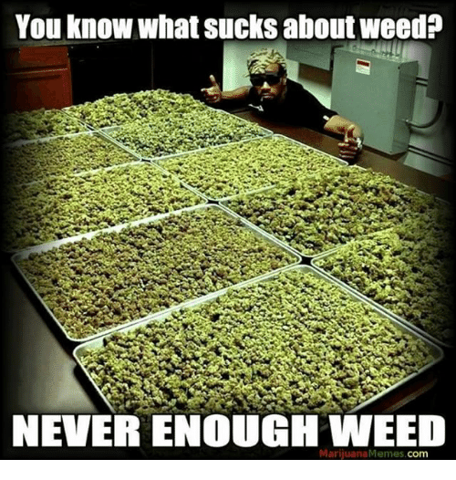 Memes, 🤖, and memes.com: You know what sucks aboutweed?  NEVER ENOUGH WEED  Marijuana Memes  Com