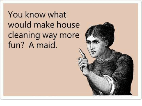 House Cleaning: You know what  would make house  cleaning way more  fun? A maid.