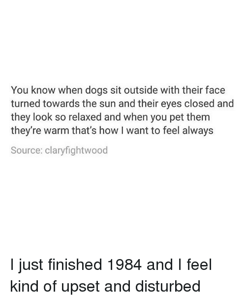 towards the sun: You know when dogs sit outside with their face  turned towards the sun and their eyes closed and  they look so relaxed and when you pet them  they re warm that's how I want to feel always  Source: claryfightwood I just finished 1984 and I feel kind of upset and disturbed