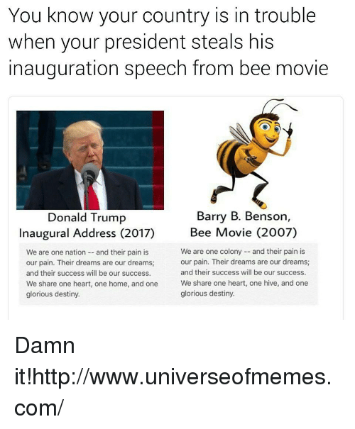 movie 2007: You know your country is in trouble  when your president steals his  inauguration speech from bee movie  Barry B. Benson,  Donald Trump  Inaugural Address (2017)  Bee Movie (2007)  We are one nation-- and their pain is  our pain. Their dreams are our dreams  and their success will be our success.  We share one heart, one home, and one  glorious destiny.  We are one colony and their pain is  our pain. Their dreams are our dreams;  and their success will be our success.  We share one heart, one hive, and one  glorious destiny. Damn it!http://www.universeofmemes.com/