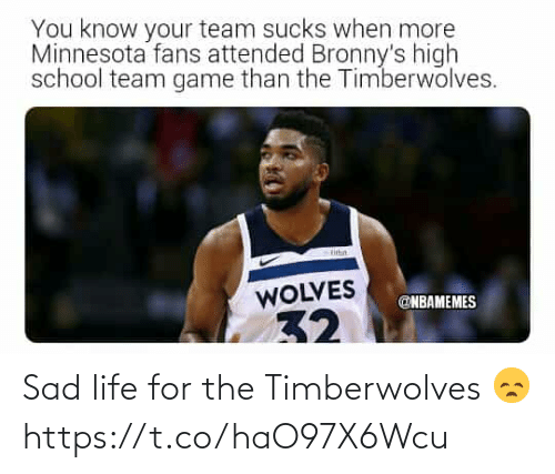 Nbamemes: You know your team sucks when more  Minnesota fans attended Bronny's high  school team game than the Timberwolves.  titin  WOLVES  @NBAMEMES  32 Sad life for the Timberwolves 😞 https://t.co/haO97X6Wcu