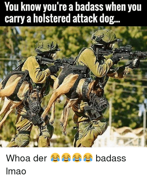 Dogs, Lmao, and Dank Memes: You know you're a badass when you  carry a holstered attack dog... Whoa der 😂😂😂😂 badass lmao