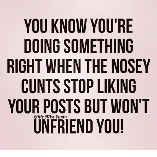 Stop Liking: YOU KNOW YOU'RE  DOING SOMETHING  RIGHT WHEN THE NOSEY  CUNTS STOP LIKING  YOUR POSTS BUT WON'T  UN FRIEND YOU!
