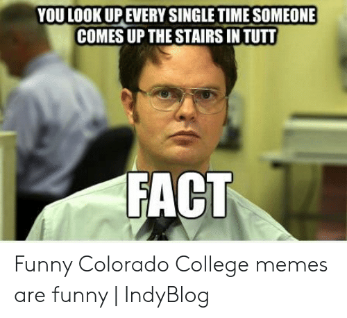 colorado college: YOU LOOK UPEVERY SINGLE TIME SOMEONE  COMES UP THE STAIRS IN TUTT  FACT Funny Colorado College memes are funny | IndyBlog