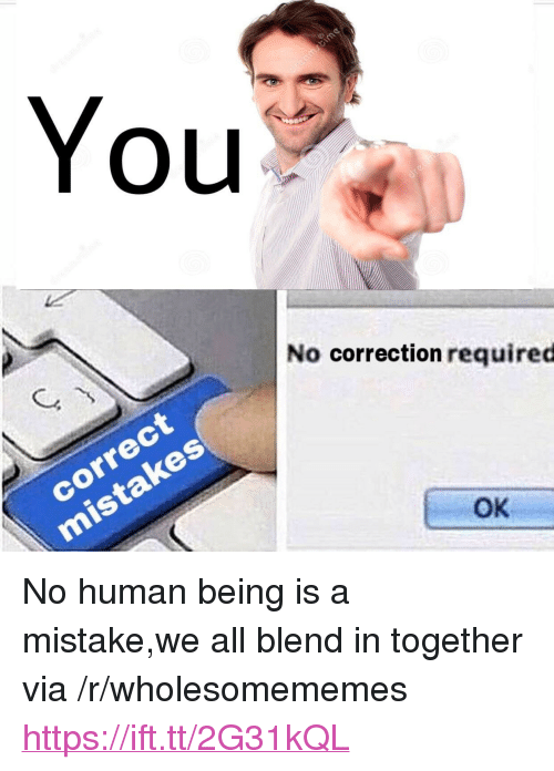 "Correction: You  LU  No correction required  correct  OK <p>No human being is a mistake,we all blend in together via /r/wholesomememes <a href=""https://ift.tt/2G31kQL"">https://ift.tt/2G31kQL</a></p>"