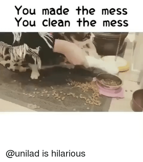 Funny, Hilarious, and You: You made the mess  You clean the mess @unilad is hilarious