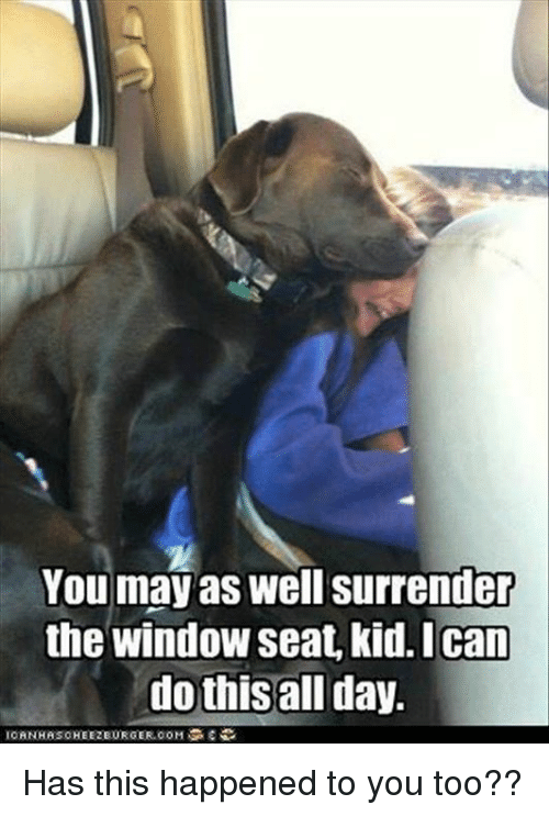 Surrend: You may as well surrender  the window seat, kid. I Can  do this all day. Has this happened to you too??