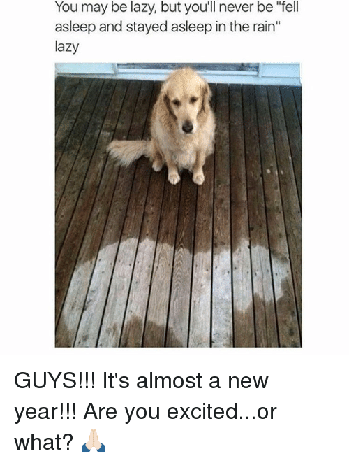 """Lazy Guys: You may be lazy, but you'll never be """"fell  asleep and stayed asleep in the rain""""  lazy GUYS!!! It's almost a new year!!! Are you excited...or what? 🙏🏻"""