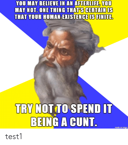 Cunt: YOU MAY BELIEVE IN AN AFTERLIFE, YOU  AY NOT. ONE THING THATS CERTAIN IS  THAT YOUR HUMAN EXISTENCE IS FINITE  TRY NOT TO SPEND IT  BEING A CUNT  made on imgur test1