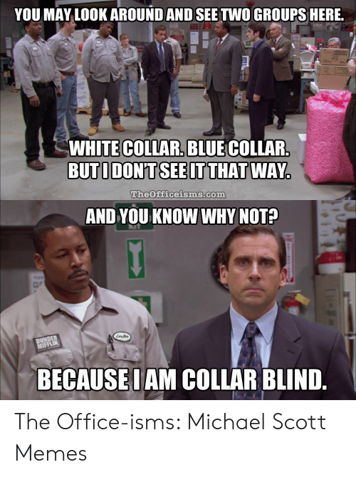 Michael Scott Memes: YOU MAY LOOKAROUND AND SEE TWO GROUPSHERE  COMPU  WHITE COLLAR. BLUE COLLAR.  BUTIDONT SEE IT THAT WAY.  TheOfficeisms.com  AND YOU KNOW WHY NOT?  DUNDER  MIFFLIN  Lester  BECAUSEI AM COLLAR BLIND The Office-isms: Michael Scott Memes