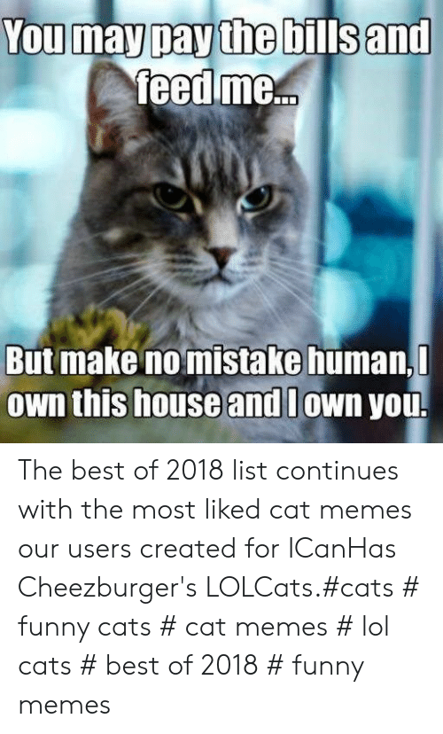 LOLcats: You may pay the bills and  feed me...  But make no mistake human,  Own this house and lown you. The best of 2018 list continues with the most liked cat memes our users created for ICanHas Cheezburger's LOLCats.#cats # funny cats # cat memes # lol cats # best of 2018 # funny memes