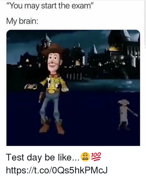 """Test Day: """"You may start the exam""""  My brain: Test day be like...😩💯 https://t.co/0Qs5hkPMcJ"""