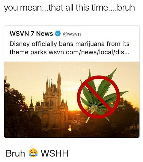 Bruh, Disney, and Memes: you mean...that all this time....bruh  WSVN 7 News  awsvn  Disney officially bans marijuana from its  theme parks wsvn.com/news/local/dis... Bruh 😂 WSHH