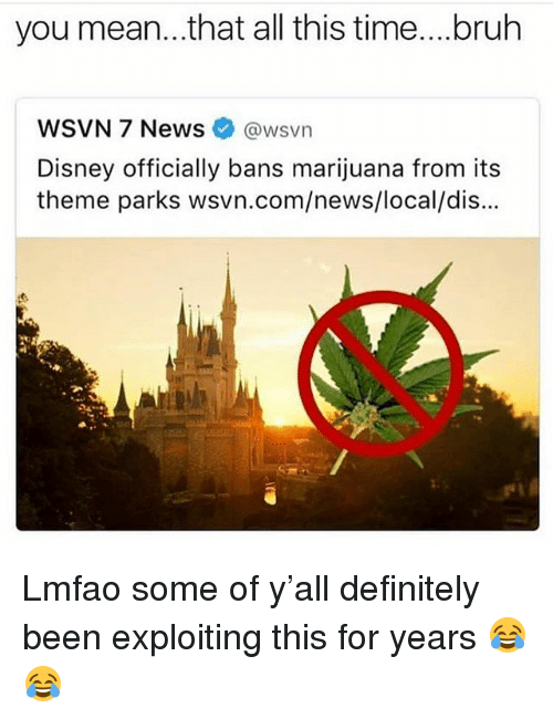 Bruh, Definitely, and Disney: you mean...that all this time....bruh  WSVN 7 News @wsvn  Disney officially bans marijuana from its  theme parks wsvn.com/news/local/dis... Lmfao some of y'all definitely been exploiting this for years 😂😂