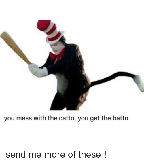 mess: you mess with the catto, you get the batto send me more of these !
