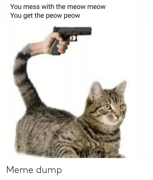 Mess With: You mess with the meow meow  You get the peow peow Meme dump