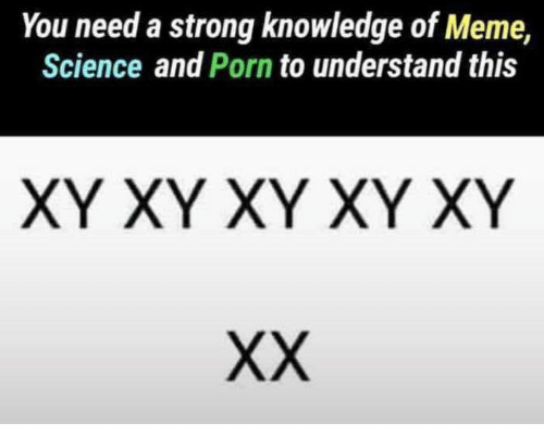 Meme Science: You need a strong knowledge of Meme,  Science and Porn to understand this  XY XY XY XY XY