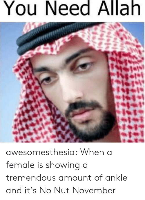 allah: You  Need  Allah awesomesthesia:  When a female is showing a tremendous amount of ankle and it's No Nut November
