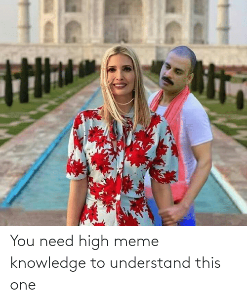 high meme: You need high meme knowledge to understand this one