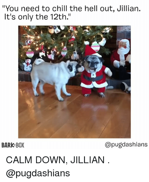"""Chill, Memes, and Hell: """"You need to chill the hell out, Jillian.  It's only the 12th.""""  10  BARK BOX  @pugdashians CALM DOWN, JILLIAN . @pugdashians"""