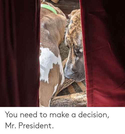 mr president: You need to make a decision, Mr. President.