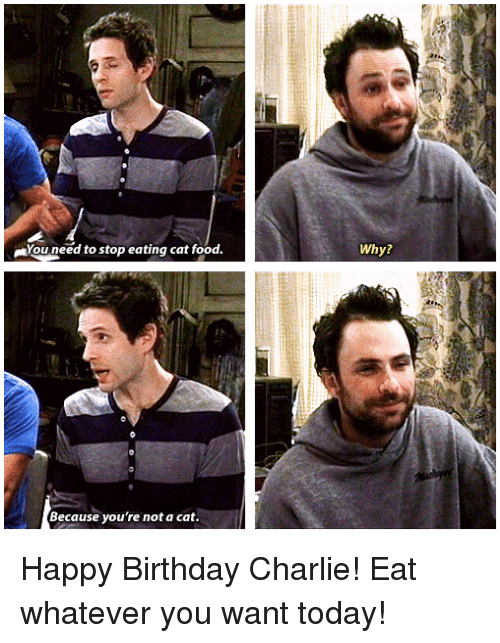 Birthday, Charlie, and Food: You need to stop eating cat food.  Why?  Because you're not a cat Happy Birthday Charlie! Eat whatever you want today!