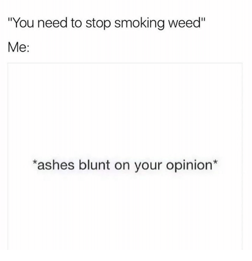 """Stop Smoking: """"You need to stop smoking weed""""  Me:  ashes blunt on your opinion"""