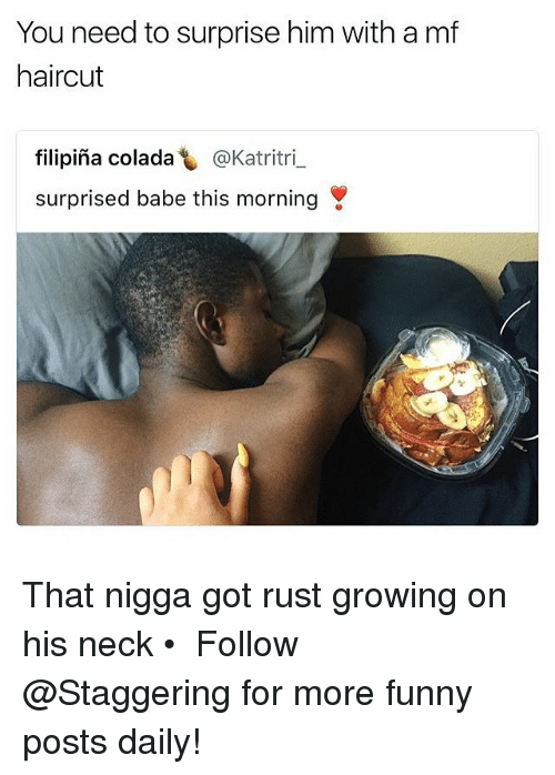 Funny, Haircut, and Trendy: You need to surprise him with a mf  haircut  filipina colada し@Katritri-  surprised babe this morning That nigga got rust growing on his neck • ➫➫➫ Follow @Staggering for more funny posts daily!
