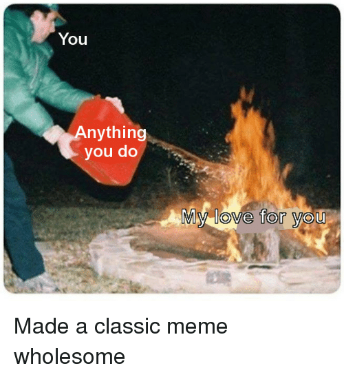 Classic Meme: You  nything  you do  My love for you <p>Made a classic meme wholesome</p>