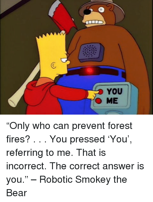 """Forest Fire: YOU  O ME """"Only who can prevent forest fires? . . . You pressed 'You', referring to me. That is incorrect. The correct answer is you."""" – Robotic Smokey the Bear"""