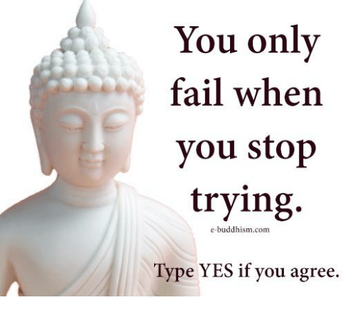 Memes, 🤖, and Typing: You only  fail when  you stop  trying.  e-buddhism.com  Type YES if you agree