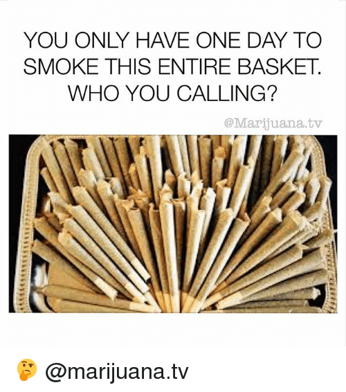 Who You Calling: YOU ONLY HAVE ONE DAY TO  SMOKE THIS ENTIRE BASKET  WHO YOU CALLING?  @Marijuana.tv 🤔 @marijuana.tv