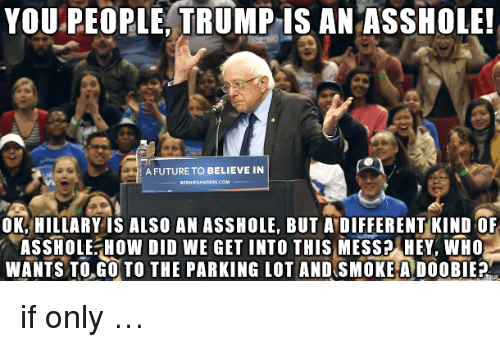 Trump: YOU.PEOPLE,  TRUMP  IS  AN  ASSHOLE  A FUTURE TO BELIEVE IN  OK, HILLARY IS ALSO AN ASSHOLE, BUT A DIFFERENT KIND OF  ASSHOLE HOW DID WE GET INTO THIS MESS? HEY, WHO  WANTS TOGO TO THE PARKING LOT AND SMOKE A DOOBIE <p>if only &hellip;</p>