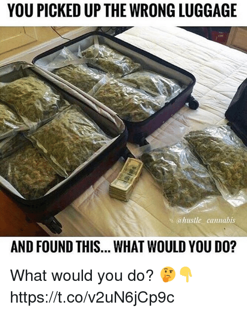 Memes, Luggage, and Cannabis: YOU PICKED UP THE WRONG LUGGAGE  ahustle cannabis  AND FOUND THIS... WHAT WOULD YOU DO? What would you do? 🤔👇 https://t.co/v2uN6jCp9c