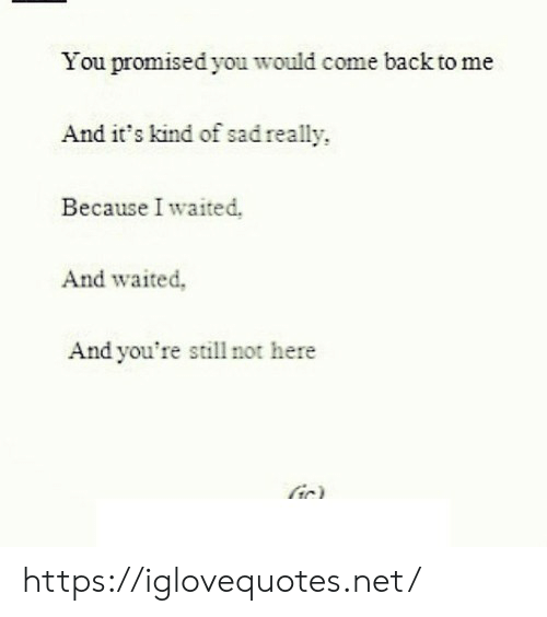you promised: You promised you would come back to me  And it's kind of sad really  Because I waited.  And waited,  And you're still not here  ir) https://iglovequotes.net/