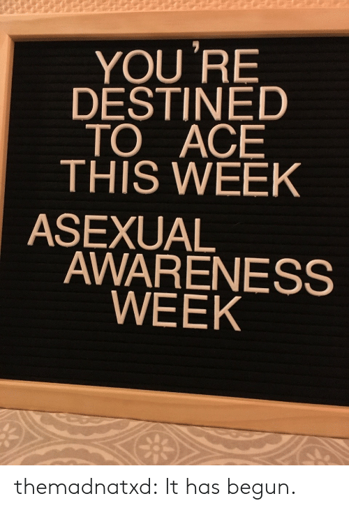 Asexual: YOU 'RE  DESTINED  TO ACE  THIS WEEK  ASEXUAL  AWARENESS  WEEK themadnatxd:  It has begun.