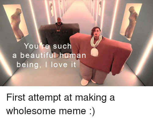 Beautiful, Love, and Meme: You re such  a beautiful human  being, I love it