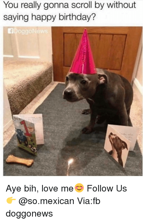 bih: You really gonna scroll by without  saying happy birthday? Aye bih, love me😊 Follow Us👉 @so.mexican Via:fb doggonews