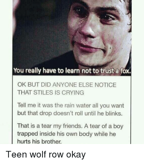 Crying, Friends, and Memes: You really have to learn not to trust a fox.  OK BUT DID ANYONE ELSE NOTICE  THAT STILES IS CRYING  Tell me it was the rain water all you want  but that drop doesn't roll until he blinks.  That is a tear my friends. A tear of a boy  trapped inside his own body while he  hurts his brother. Teen wolf row okay