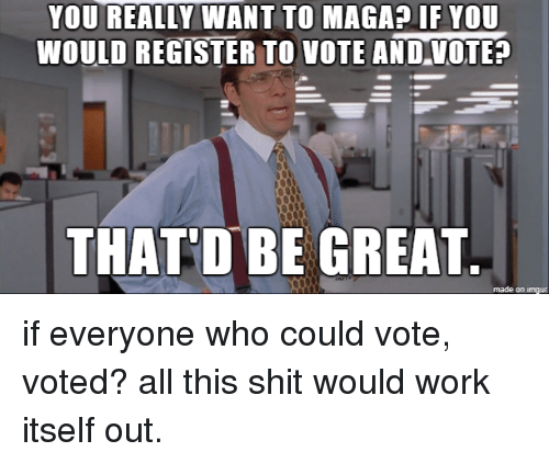 Thatd Be Great: YOU REALLY WANT TO MAGA? IF YOU  WOULD REGISTER TO VOTE ANDVOTE  THATD BE GREAT  made on imgur if everyone who could vote, voted? all this shit would work itself out.
