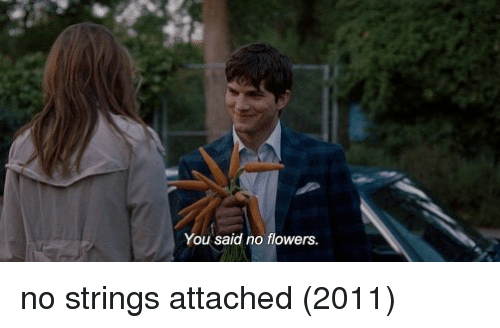 Strings Attached: You said no flowers no strings attached (2011)