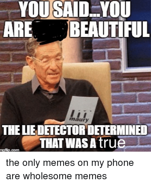 Beautiful, Ironic, and Maury: YOU SAID YOU  ARE  BEAUTIFUL  maury  THELIEDETECTOR DETERMINED  THAT WAS A true  mg flip com the only memes on my phone are wholesome memes