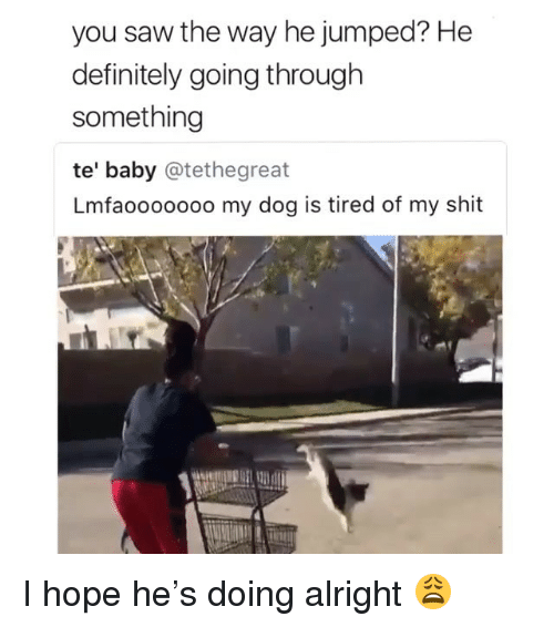 Definitely, Saw, and Shit: you saw the way he jumped? He  definitely going through  something  te' baby @tethegreat  Lmfaoooooo0 my dog is tired of my shit  较111 I hope he's doing alright 😩