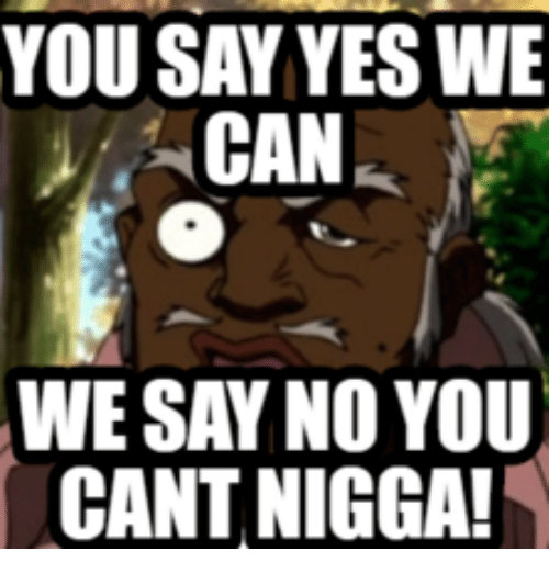No You Can't and Cat Saying Yes: YOU SAY YESWE  CAN  WE SAY NO YOU  CANT NIGGA!