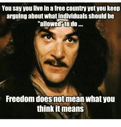 Arguing, Memes, and Individualism: You say you live in afree country yet you keep  arguing about what individuals Should be  allowed to do  Freedom does not mean what you  think it means