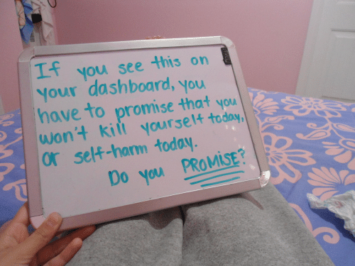 You See This: you see this on  Your dashboard, you  have to promise that you  wont kiit yourset4  or self-harm today  Mi  Do you PROMİSE?